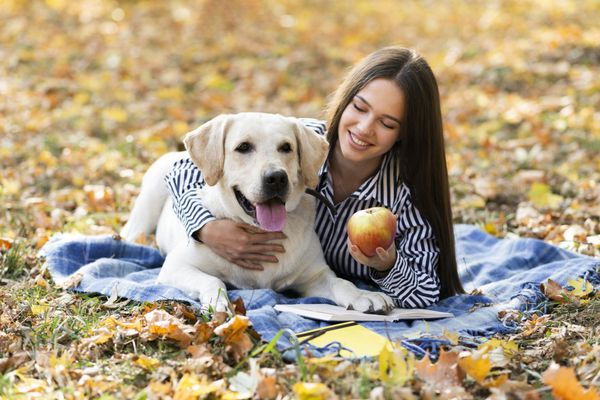 Can Dogs Eat Apples? Your Go-To Guide for This Delicious Snack!