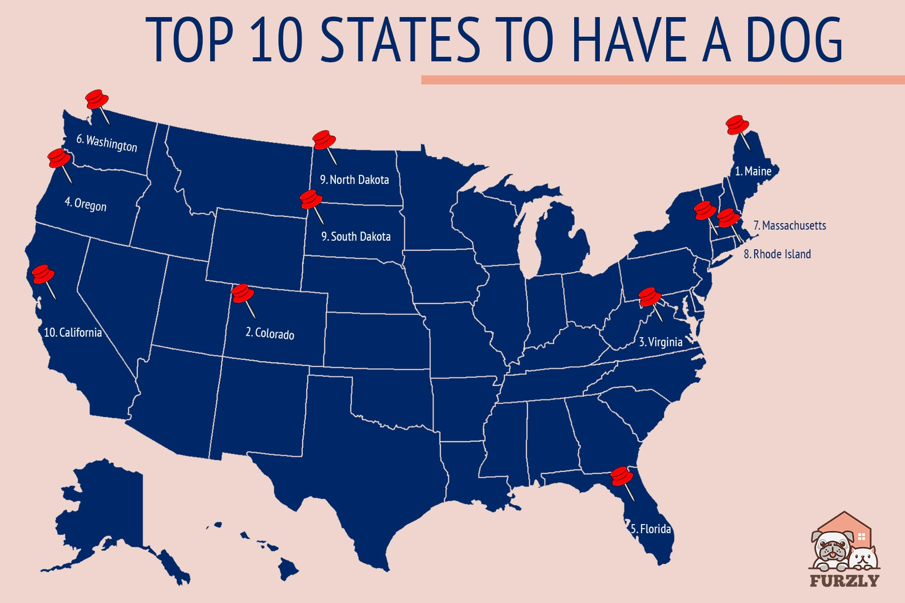 Most Dog-Friendly States to Live in!