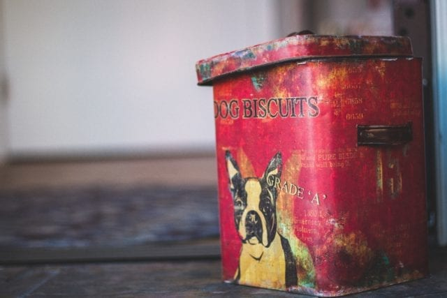 Old red tin with black and white Boston terrier on front that says Dog Biscuits